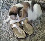 Louloo-in-gold-sandels