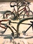 12-16-15-Denver---snow-bikes