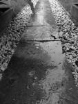 8-31-am-rain-sidewalk-11-24-15-2